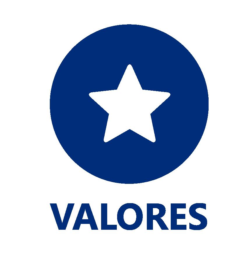 valoresicon